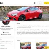 """Przykładowy profil firmowy w GG firmy """"Direct Salvage"""" z Wielkiej Brytanii."""